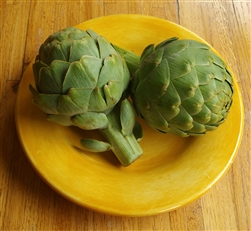 California Globe Artichokes  - 5 Pack